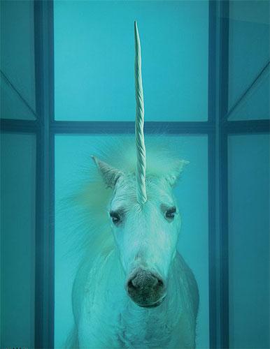 hirst-unicorn